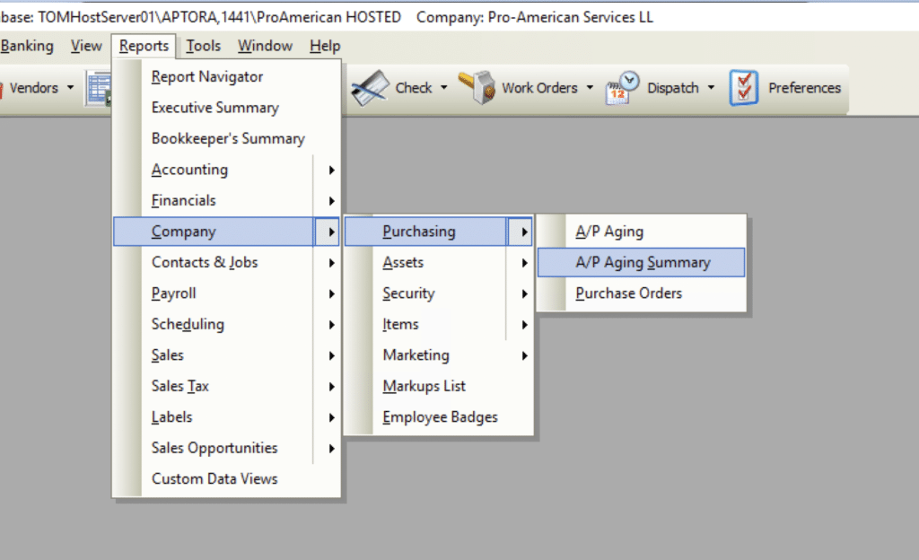 A/P Aging Summary File Path