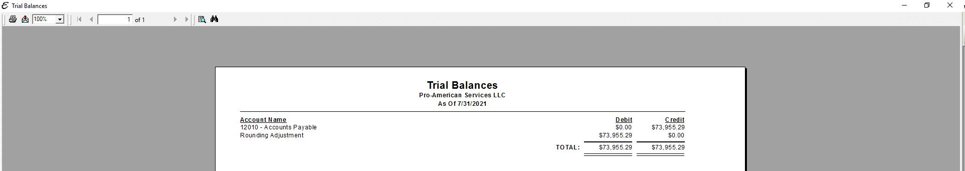 Trial Balance Report PDF